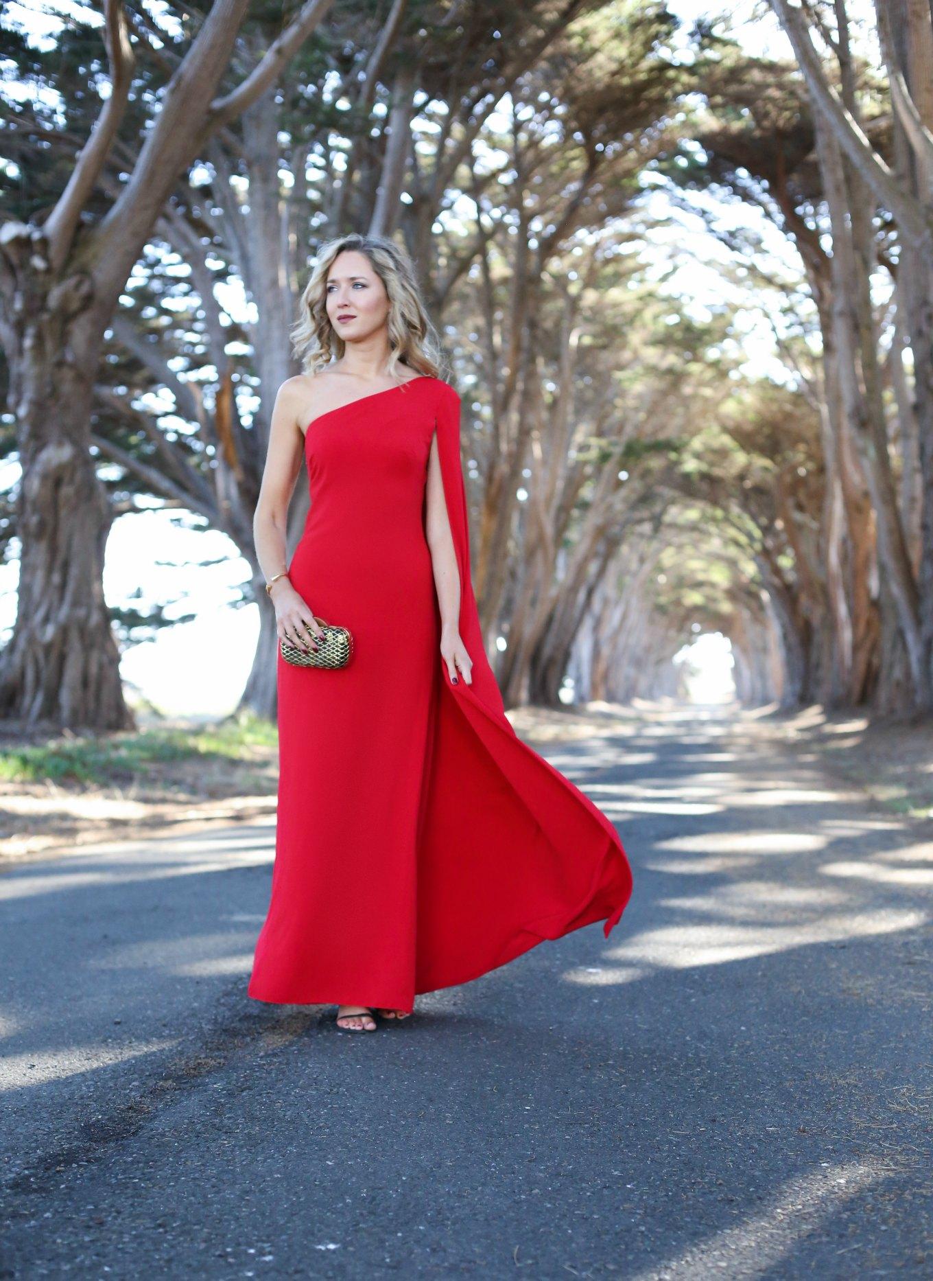 6 Red One Shoulder Carolina Jill Stuart Gown